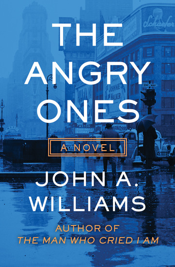 The Angry Ones - A Novel - cover