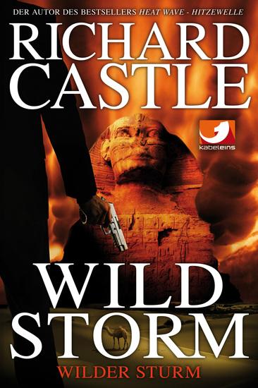 Derrick Storm 2: Wild Storm - Wilder Sturm - cover