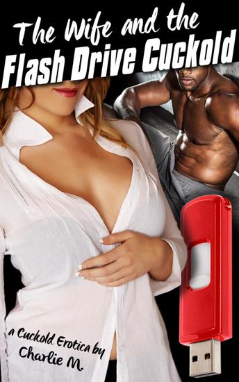 The Wife and the Flash Drive Cuckold - cover