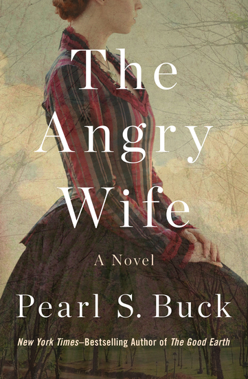 The Angry Wife - A Novel - cover