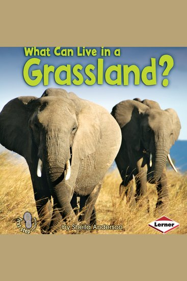 What Can Live in a Grassland? - cover