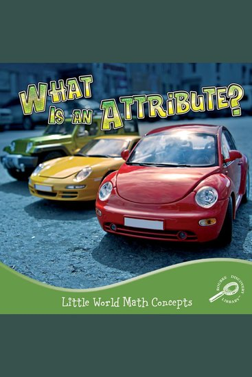 What Is an Attribute? - cover