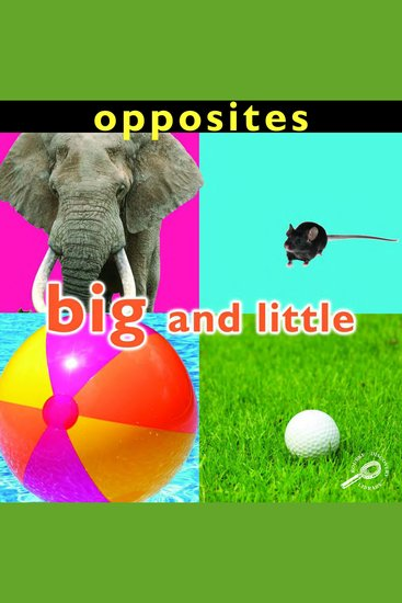 Opposites: Big and Little - cover