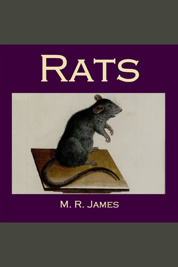 Rats - cover