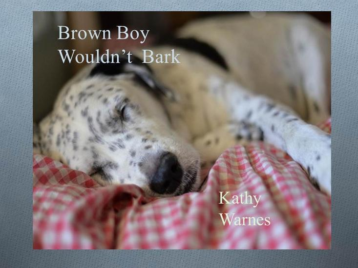 Brown Boy Wouldn't Bark! - Playground Pocket Books - cover