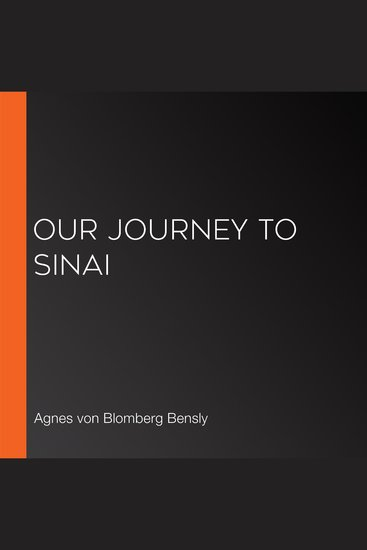 Our Journey to Sinai - cover