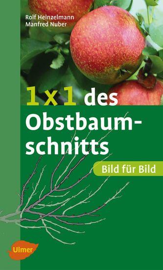 1 x 1 des Obstbaumschnitts - Bild für Bild - cover