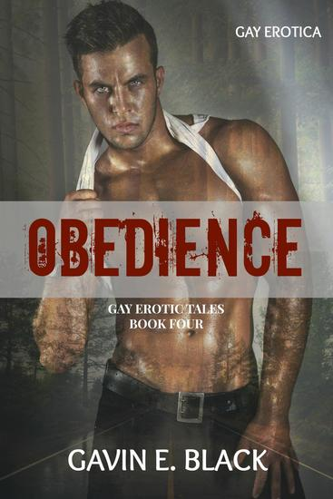 Roadside Distraction - Gay Erotic Tales #4 - cover