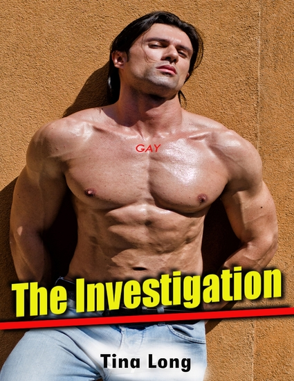 Gay: The Investigation - cover