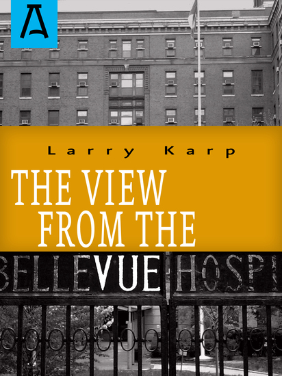The View from the Vue - cover
