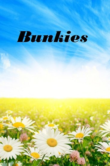Bunkies - cover
