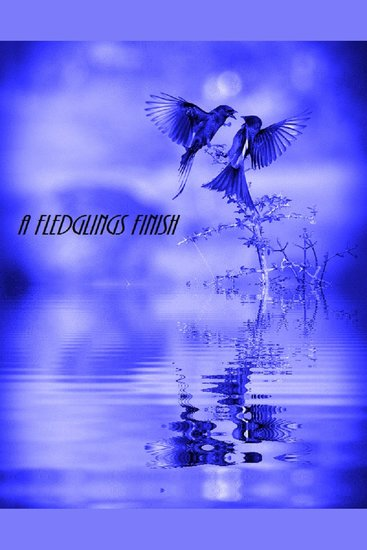 A Fledglings Finish - cover