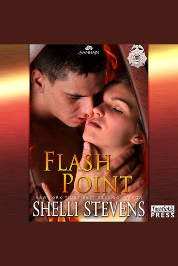 Flash Point - Holding Out for a Hero Book 3 - cover