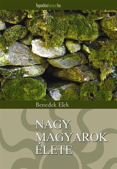 Nagy magyarok élete - cover