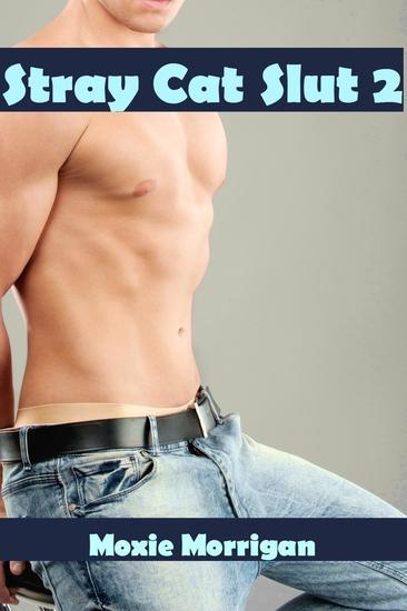 Stray Cat Slut 2 (shapeshifter homosexual erotica anal oral semi-public sex) - cover