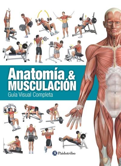 ANATOMÍA & MUSCULACIÓN - Guía visual completa - cover
