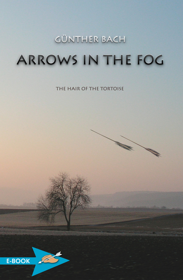 Arrows In The Fog - The Hair Of The Tortoise - cover