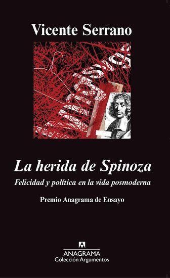 La herida de Spinoza - cover