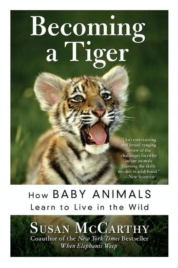 Becoming a Tiger - The Education of an Animal Child - cover