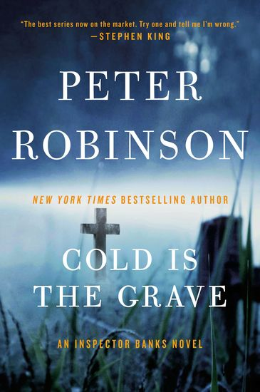Cold Is the Grave - A Novel of Suspense - cover