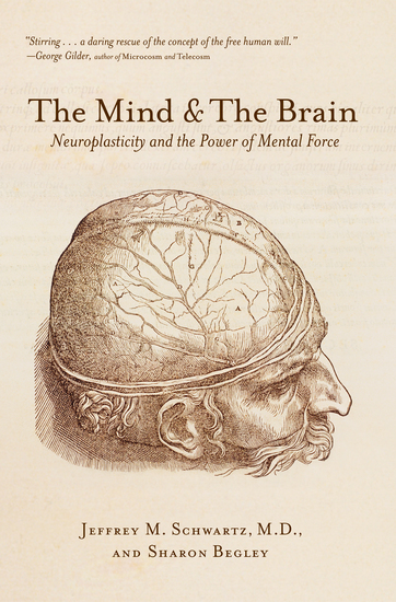 The Mind and the Brain - cover