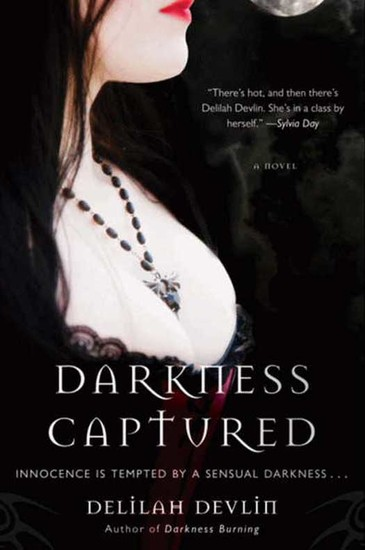 Darkness Captured - A Novel - cover