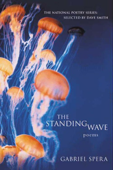 The Standing Wave - Poems - cover