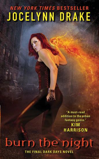 Burn the Night - The Final Dark Days Novel - cover