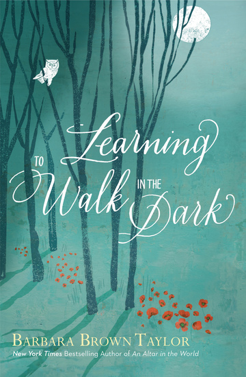 Learning to Walk in the Dark - cover