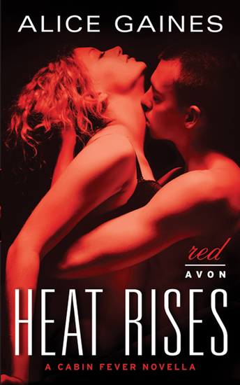 Heat Rises - A Cabin Fever Novella - cover