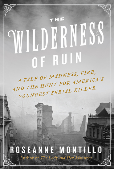The Wilderness of Ruin - A Tale of Madness Fire and the Hunt for America's Youngest Serial Killer - cover