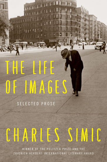 The Life of Images - Selected Prose - cover