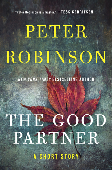 The Good Partner - cover