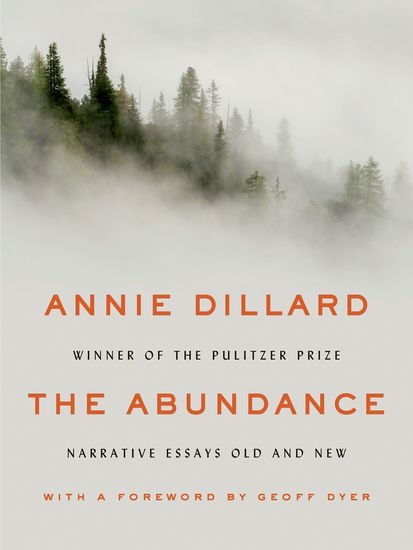 The Abundance - Narrative Essays Old and New - cover