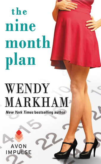 The Nine Month Plan - cover
