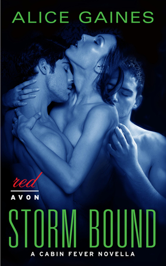 Storm Bound - A Cabin Fever Novella - cover