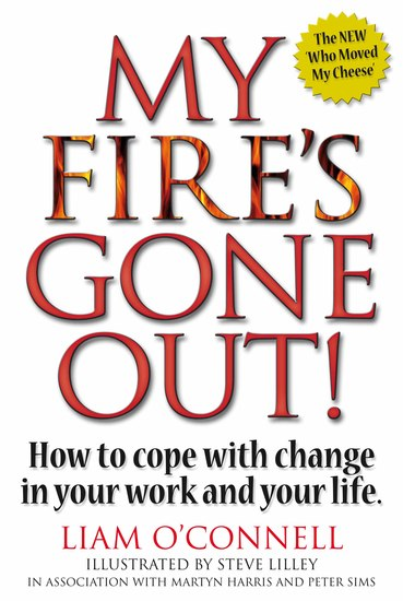 My Fire's Gone Out! - How to Cope With Change in Your Work and Life - cover