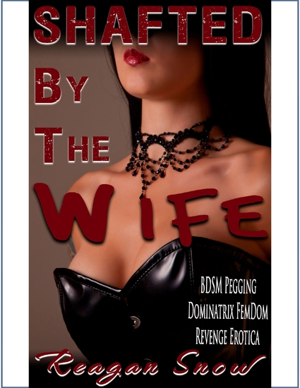 Shafted By The Wife - cover