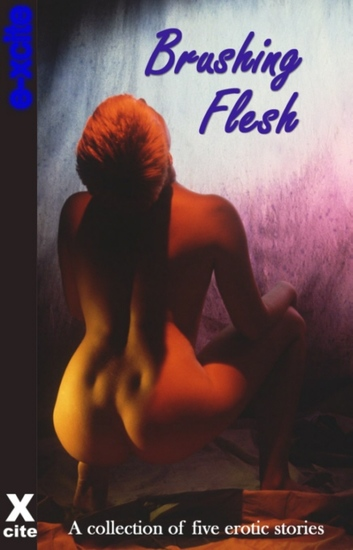 Brushing Flesh - A collection of five erotic stories - cover