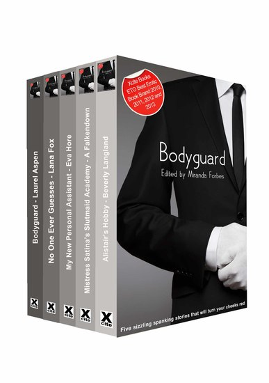 Bodyguard - A collection of five erotic stories - cover