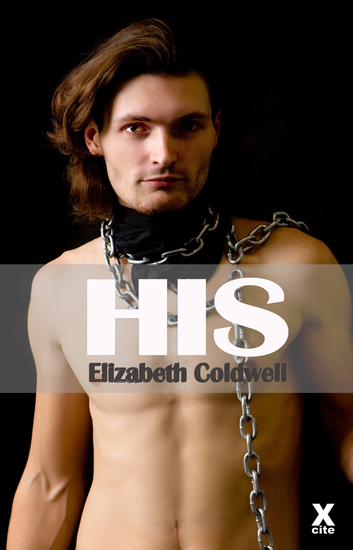 His - Gay erotic fiction - cover
