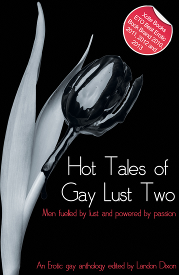 Hot Tales of Gay Lust Two - Gay erotic fiction - cover