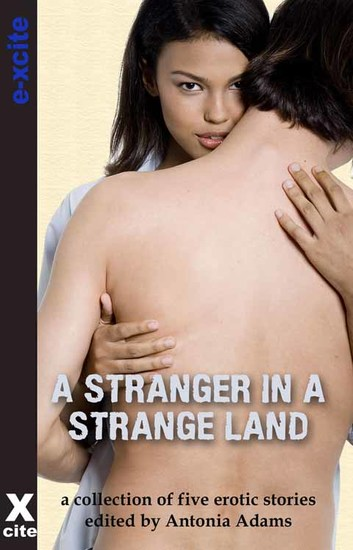 A Stranger in a Strange Land - A collection of five erotic stories - cover