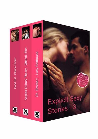 Explicit Sexy Stories - Volume Three - cover