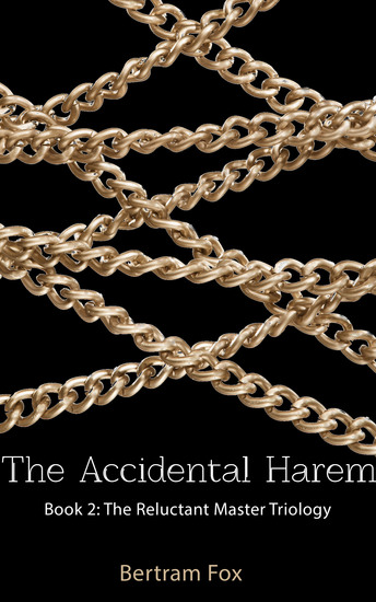 The Accidental Harem - Book Two of The Reluctant Master Trilogy - cover