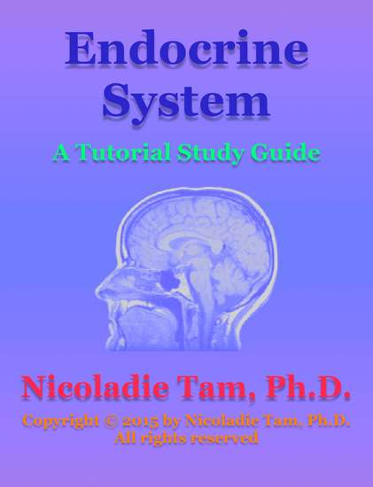Endocrine System: A Tutorial Study Guide - cover