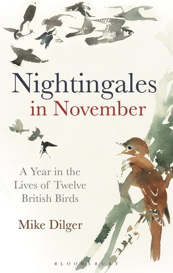 Nightingales in November - A Year in the Lives of Twelve British Birds - cover