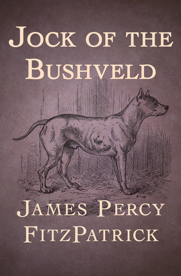 Jock of the Bushveld - cover