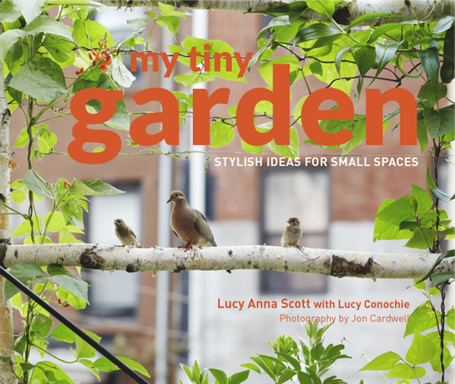 My Tiny Garden - Stylish ideas for small spaces - cover