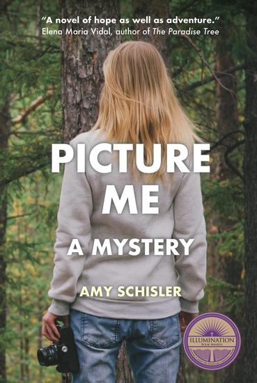Picture Me A Mystery - cover